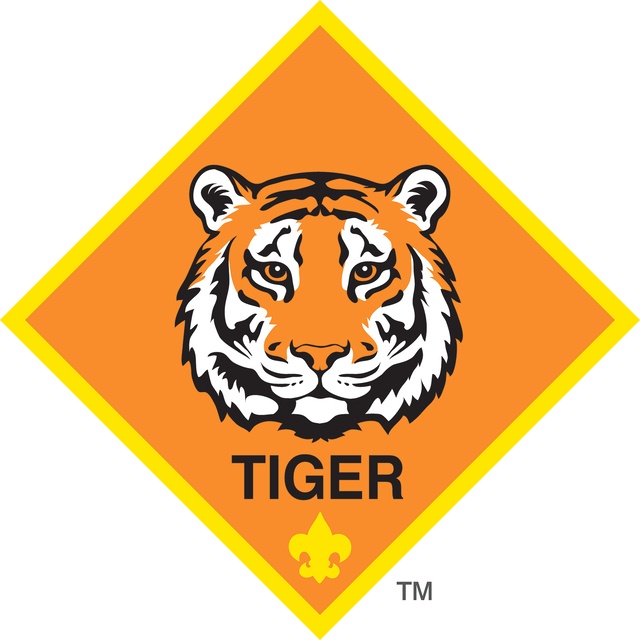 TIGER logo color